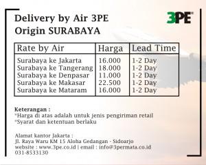 pengiriman cargo udara