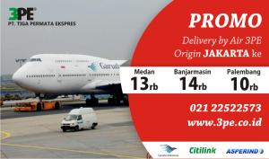 jasa cargo udara 3PE